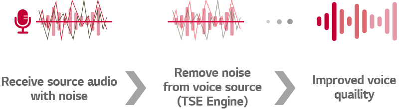 Process of TSE Engine