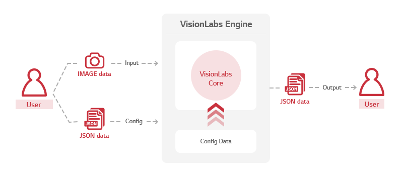 Visionlabs architecture